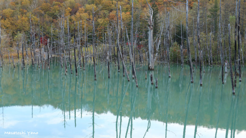 Blue_Pond_autumn