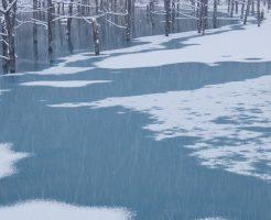 粉雪が降った青い池