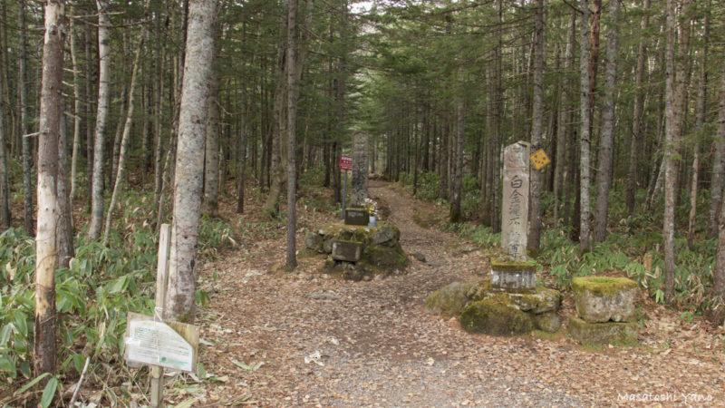 北海道美瑛町の不動の滝の入り口