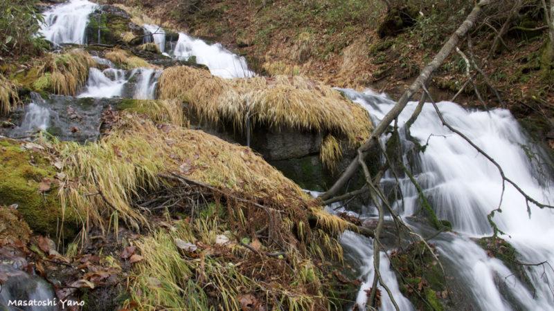 見上げてみる北海道美瑛町の不動の滝