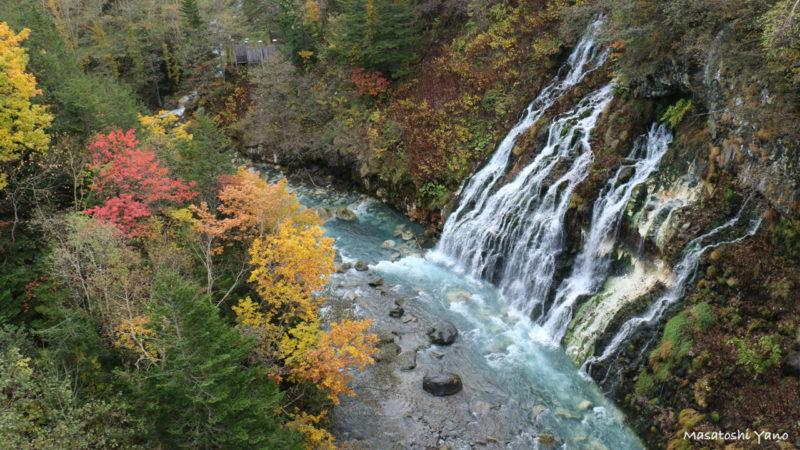 紅葉と白ひげの滝