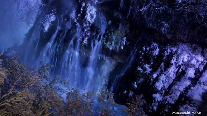 ライトアップされて青く見える白ひげの滝