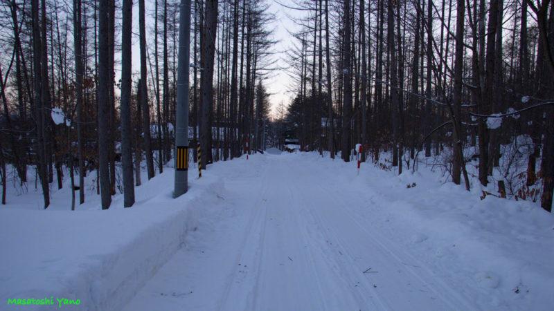 富良野にある林道