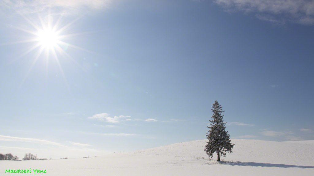 太陽を美しく撮りたい。ゴーストが写らないように写真を撮る奮闘記。