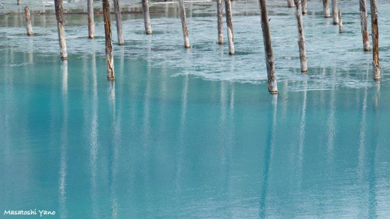 土砂すくいの工事が終わった青い池。池の表面にうっすらと氷がはっている