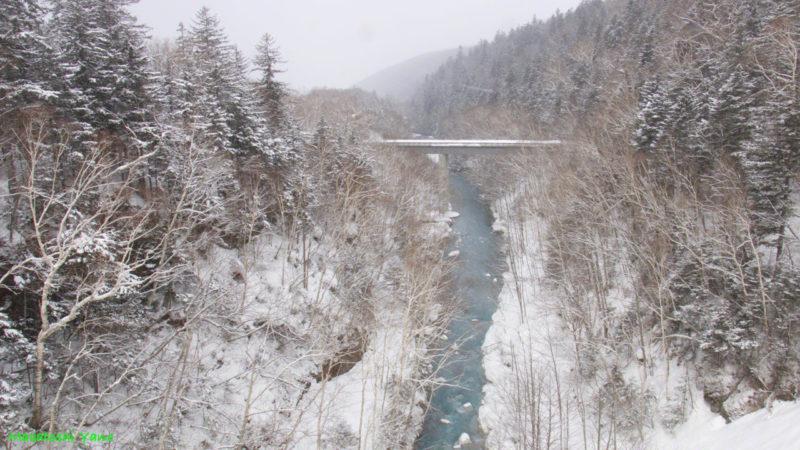 北海道美瑛町の青い川