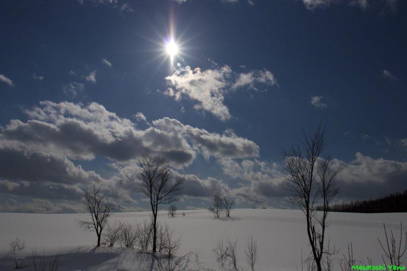 太陽と瑠辺蘂の雪原
