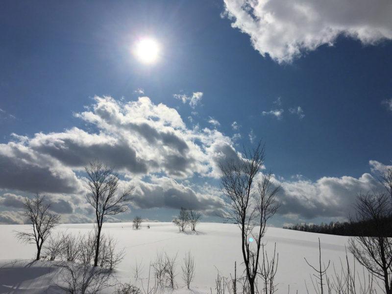 太陽と雪原