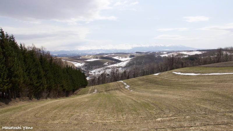 春の美瑛の丘。丘と丘が連なる様