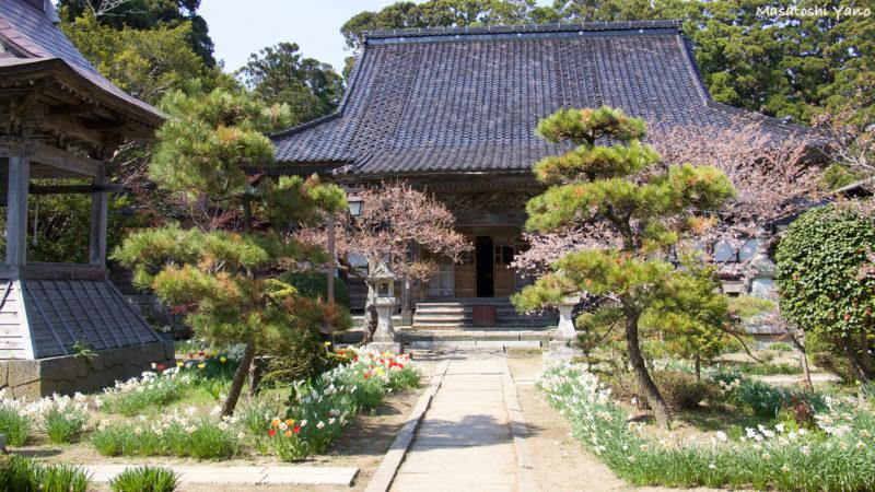 北海道の松前町にある光善寺