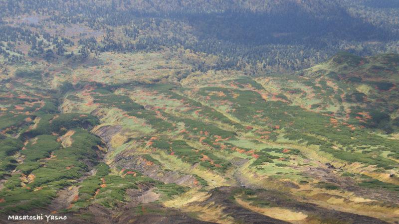 旭岳下山の時の紅葉の景色