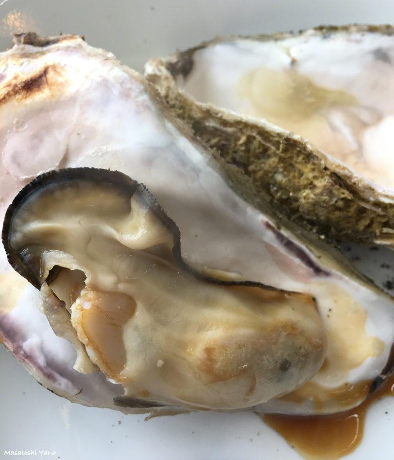 島牧村の道の駅で食べられる牡蠣