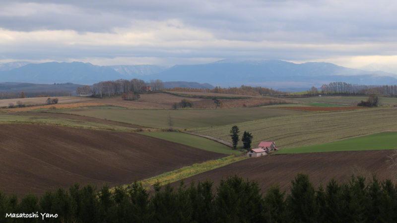 秋頃の新栄の丘