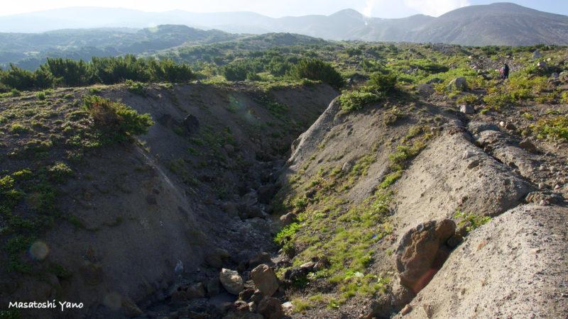 十勝岳望岳台付近にある雪解け水の流れた跡