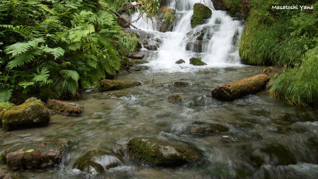 美瑛のゆういつの避暑地!!不動の滝いったいは空気がちがう