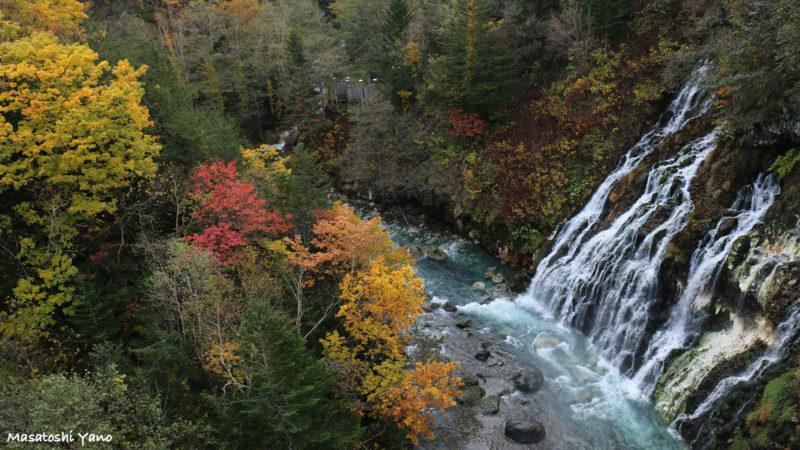 2015年10月10日に撮影した紅葉と白ひげの滝