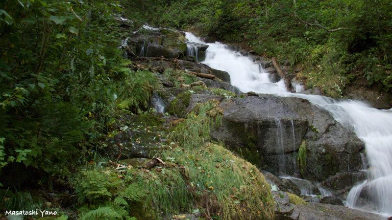 台風後の白ひげの滝