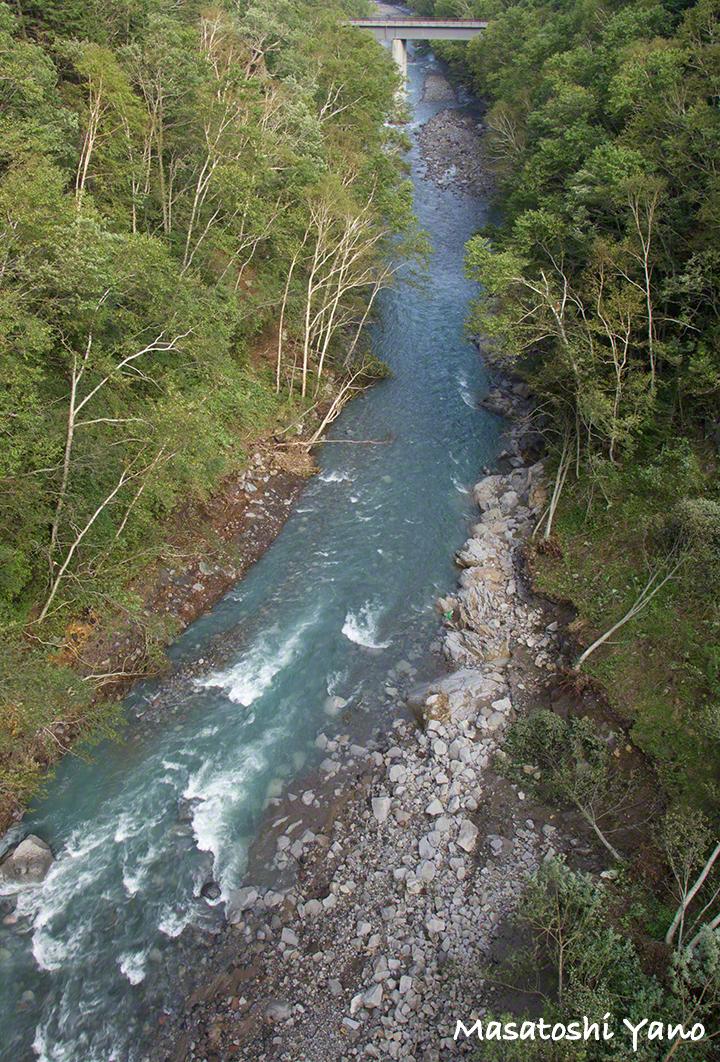台風後に青みが戻ってきた美瑛町の青い川