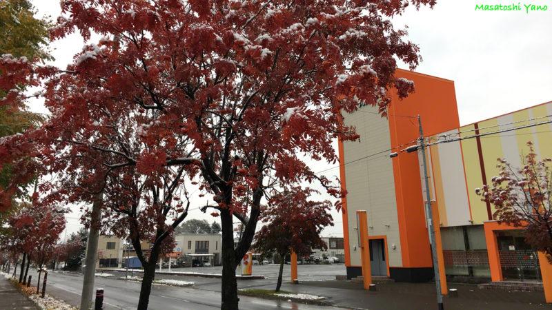旭川市内の初雪の様子