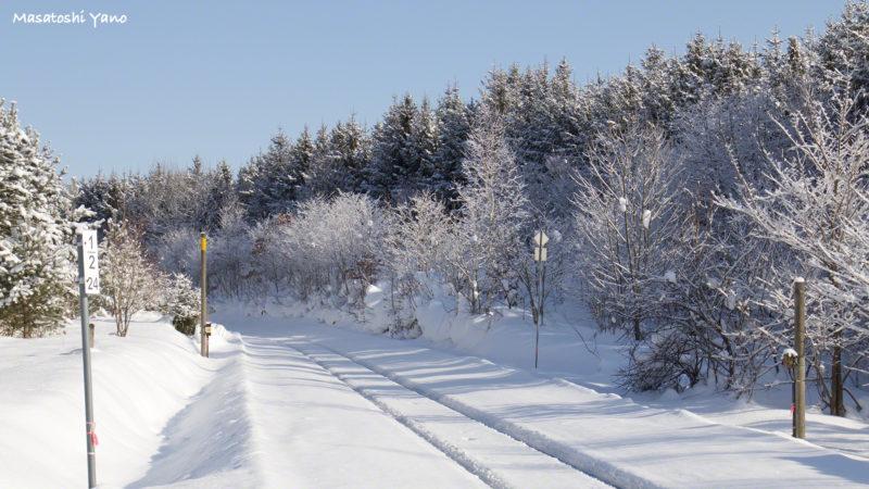 真冬の美馬牛駅