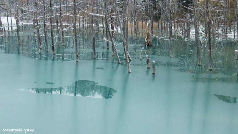 凍った青い池
