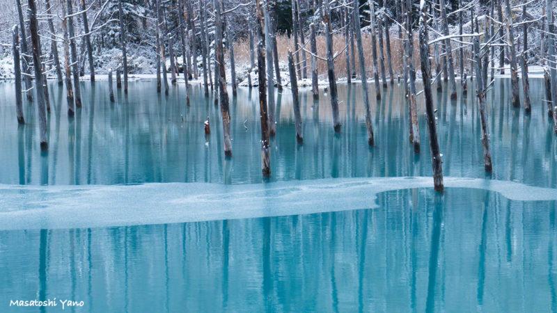 凍り始めた青い池