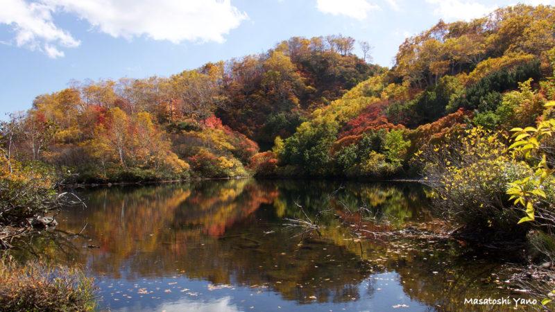 エゾ沼の紅葉