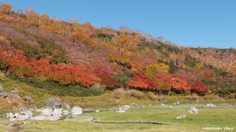 空沼の紅葉