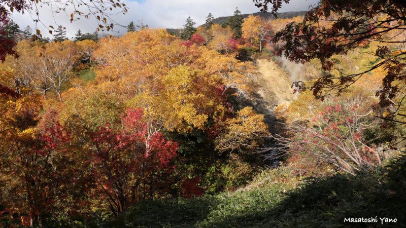 高原沼コースから見る紅葉