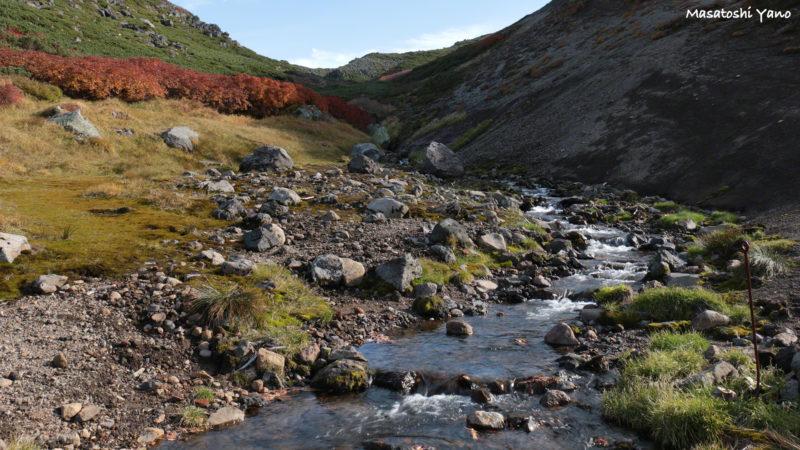 黒岳の雲ノ平を流れる小川