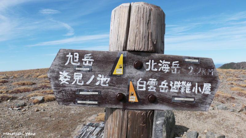 間宮岳の分岐