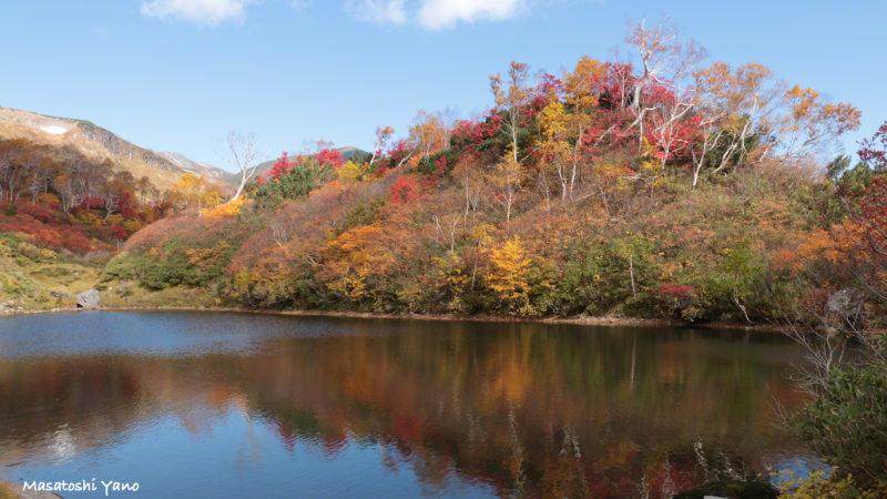 式部沼の紅葉