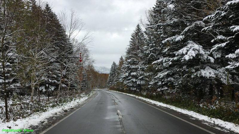 白金の雪景色