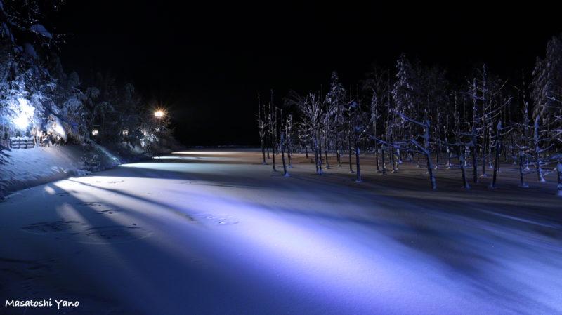 2016年の青い池のライトアップの様子
