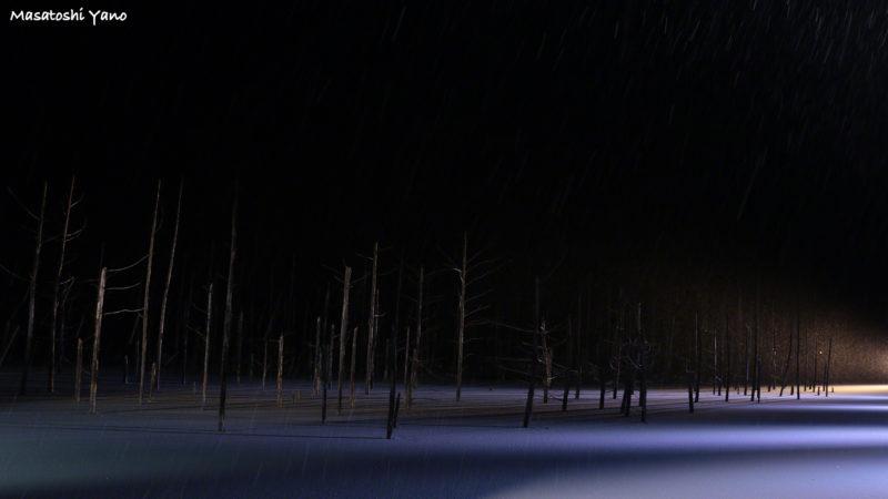 大雪の日の青い池のライトアップ