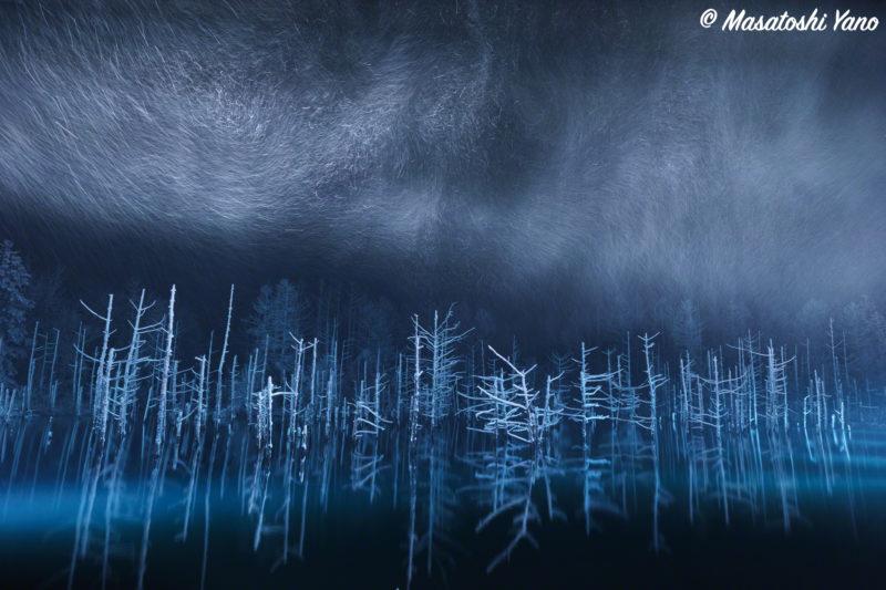まだ雪が積もっていない時期の青い池のライトアップ