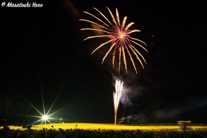 北竜町の花火大会 ひまわりの花火