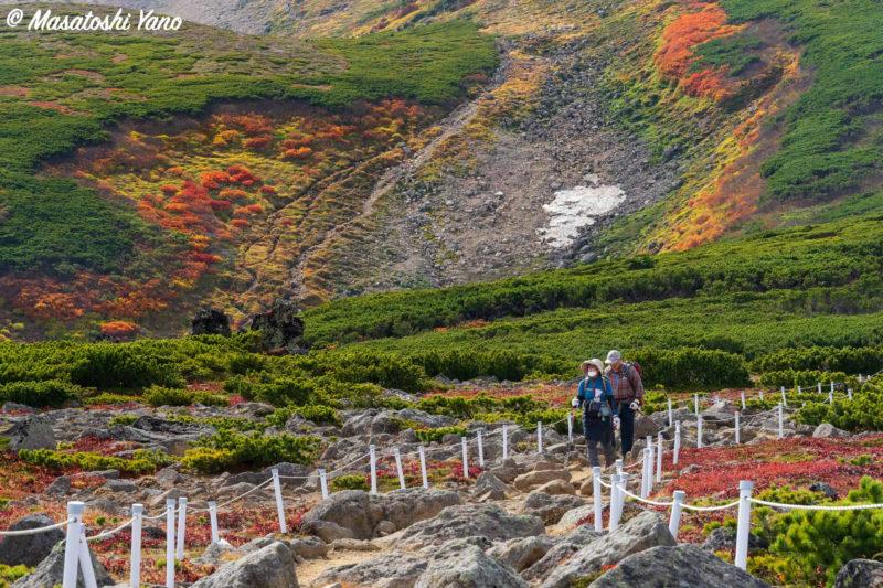 緑岳の急斜面の紅葉