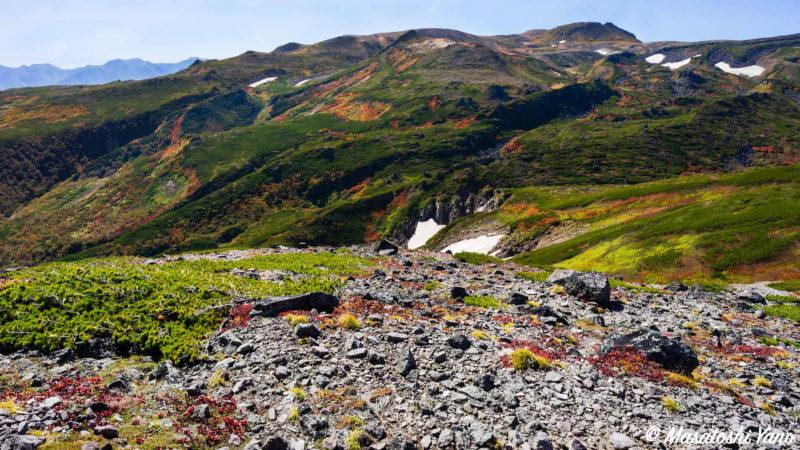 黒岳頂上から見渡した紅葉した山々