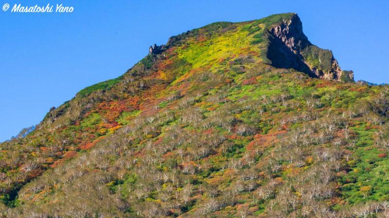 紅葉し始めた黒岳