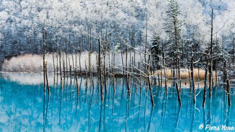 2018年に撮影した初雪の青い池