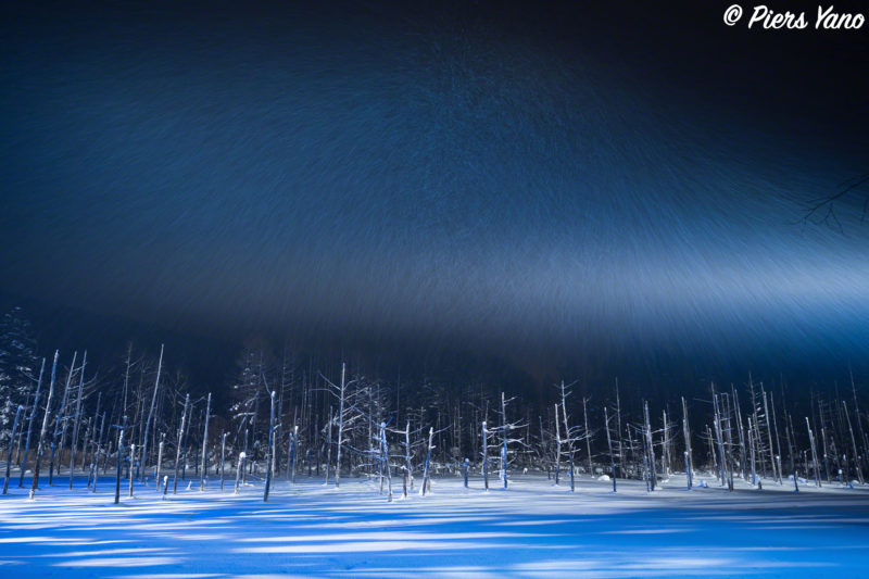 大雪の日の青い池ライトアップ
