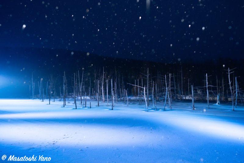 青い池のライトアップ4月に降る雪
