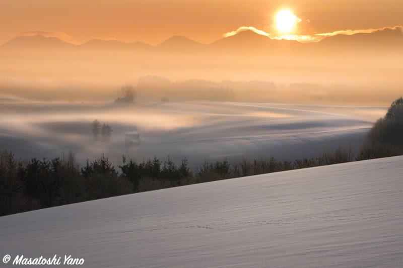 冬の新栄の丘