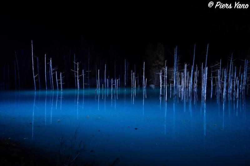 青い池のライトアップー静寂