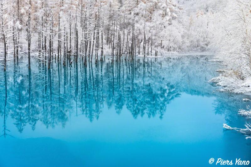 青い池の雪景色