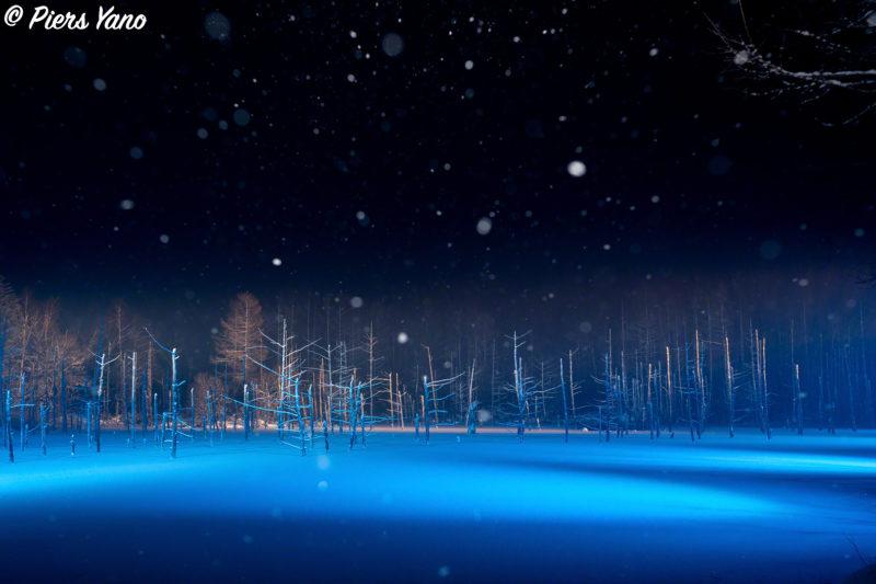 青い池 雪面のライトアップ