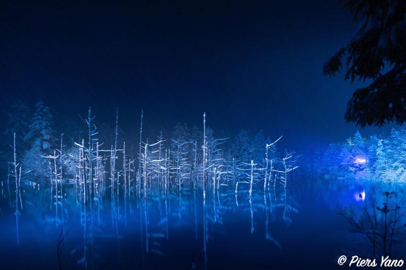 青い池 静寂なライトアップ